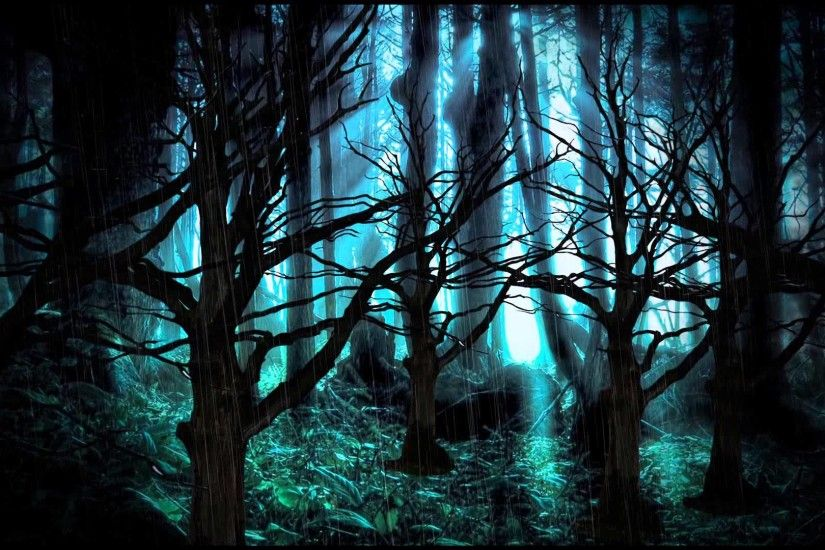 Background Dark Forest