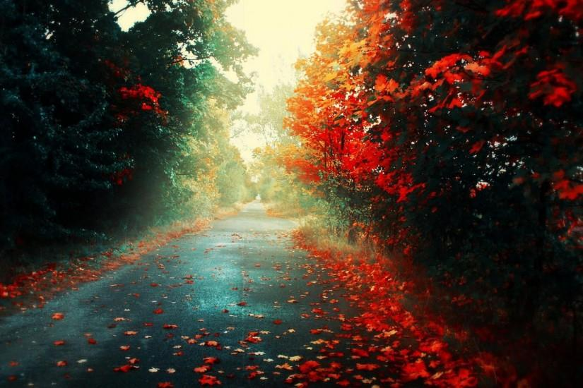 fall 1080p hd wallpapers fall hd wallpapers 1080p