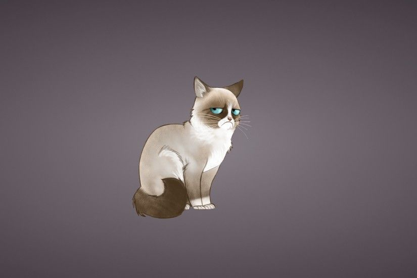 Preview wallpaper grumpy cat, meme, cat 2560x1440