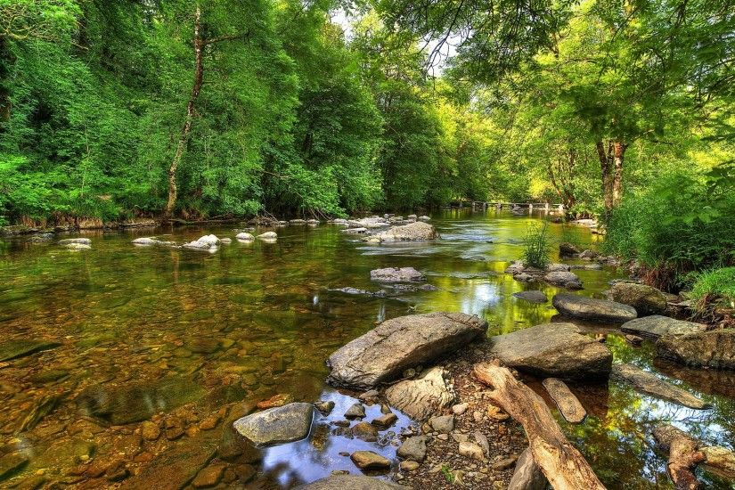 Green forest by the rocky river wallpaper