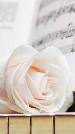 Pure White Rose Music Note iPhone 6 wallpaper