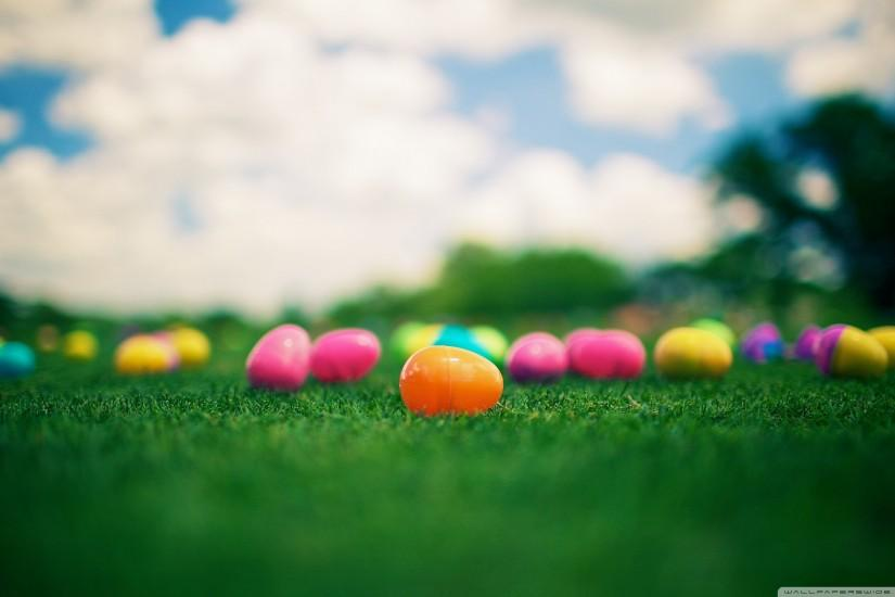 amazing easter backgrounds 2560x1600 windows