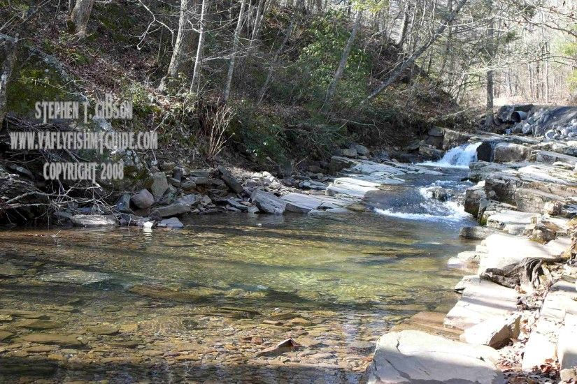 virginia fly fishing: mossy creek, rose river, trophy trout, va, Fly