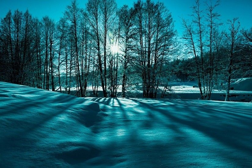 Nature Beauty Winter Trees Snow Landscape Wallpaper Free Download For  Windows 7 - 1920x1200