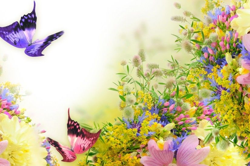 Spring Fragrant Summer Pink Wild Pastel Cosmos Lavender Flowers Soft  Butterflies Best Flower Picture Quotes - 1920x1080