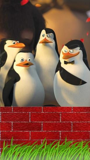 hd-penguins of madagascar mobile wallpapers 1080x1920 wall
