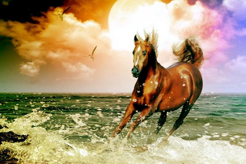download horse backgrounds 1920x1080 for tablet
