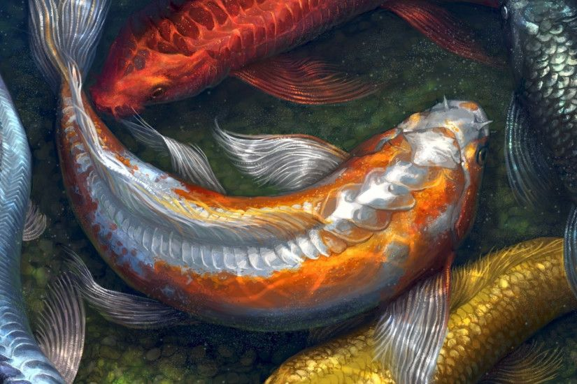... fish HD Wallpaper 2560x1440 Koi ...