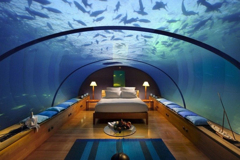 Cool Fish Backgrounds Wallpaper Cave Glass Bed Water Pillow With Resolution  Hq Blue Walls White Silhoutte ...