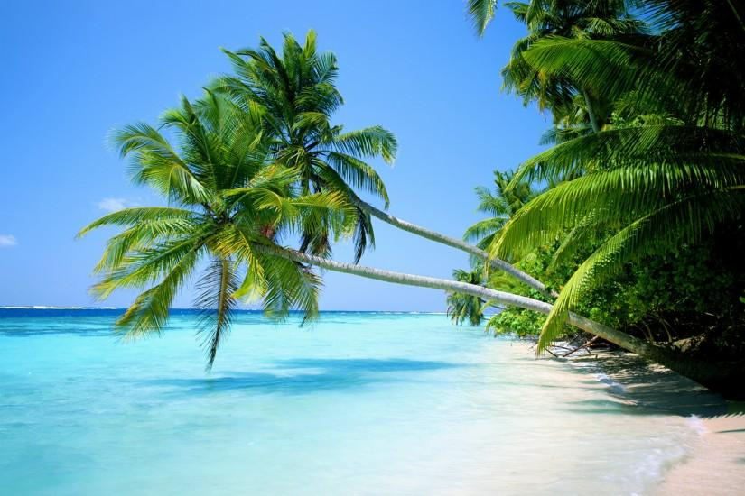 Image for Tropical Island Hd Background Wallpaper