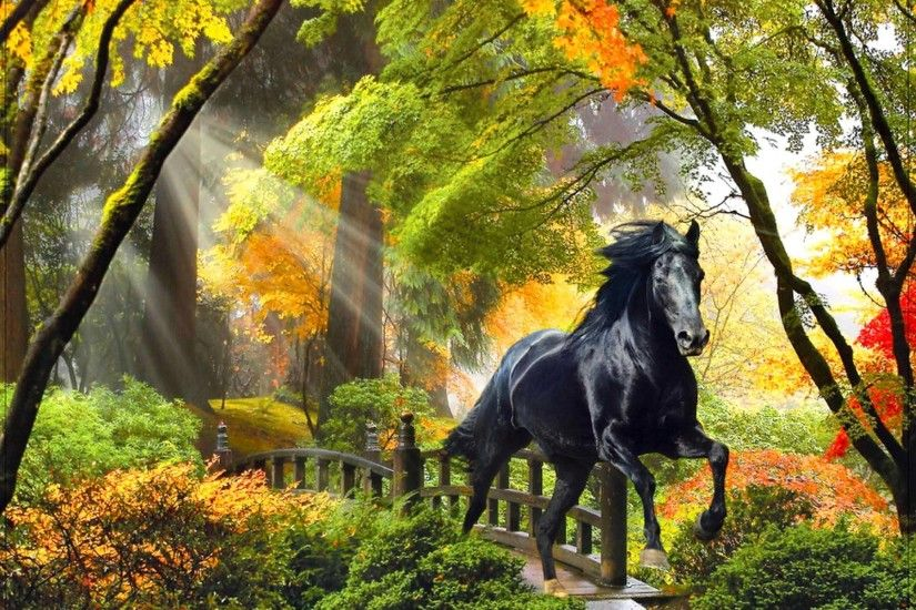 ... Background Wallpapers on Fall rays horse beautiful trees art enchanted  bridge magical