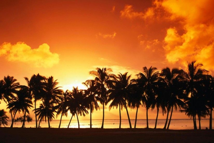Tropical Beach Background 14