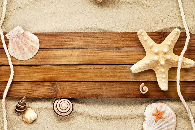 Sand Shells Snail Starfish Beach