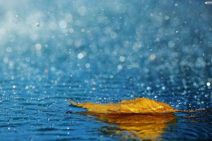 Wonderful Rain Wallpaper