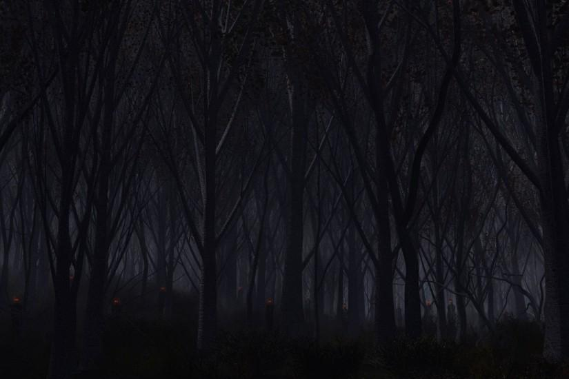 best dark forest background 1920x1080 for iphone 5