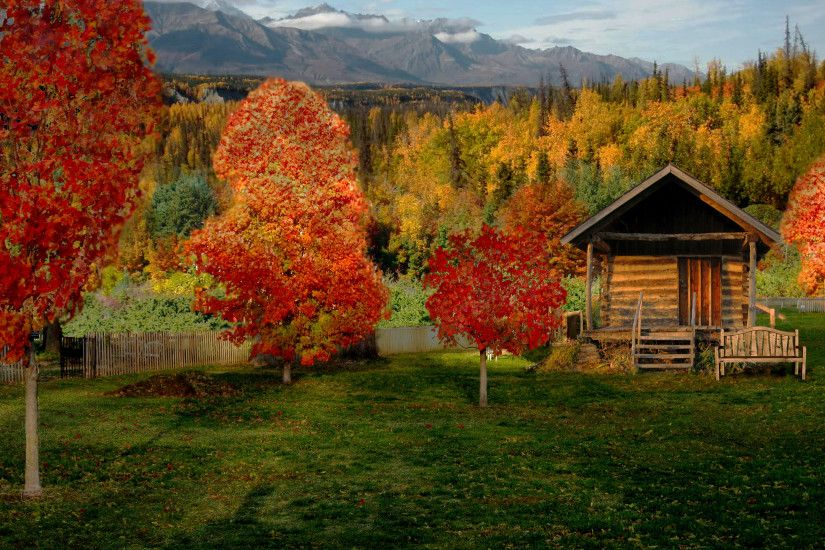 wallpaper.wiki-Nature-Log-Cabin-Background-PIC-WPD001876