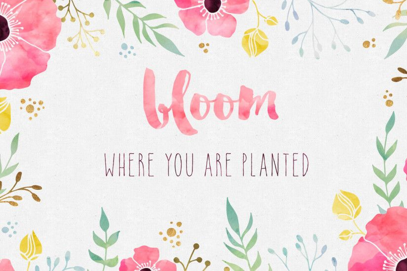 Free Desktop Wallpaper Bloom Where You Are Planted