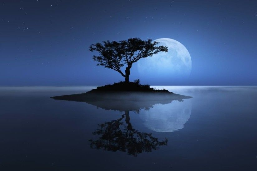Birds and tree under the blue moon wallpaper Fantasy wallpapers
