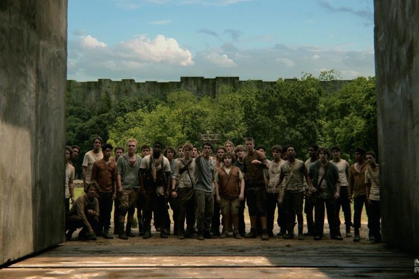 109 best Downloadable Movie Wallpaper images on Pinterest ... Image Gallery  of Maze Runner Book Wallpaper