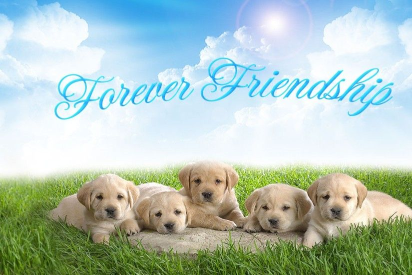 Friendship HD Wallpapers for Friendship Day