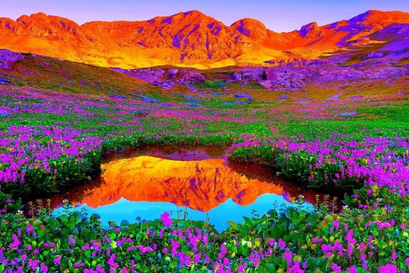 Brilliant colors of nature 1080p background hd