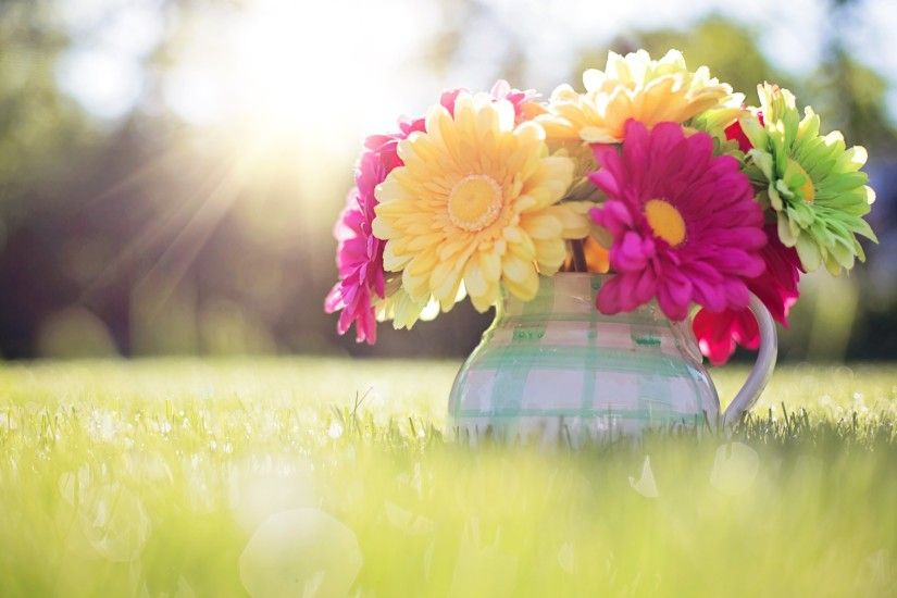 spring desktop backgrounds - http://hdwallpaper.info/spring-desktop- backgrounds/ HD Wallpapers | HD Wallpapers | Pinterest | Desktop backgrounds  and Spring