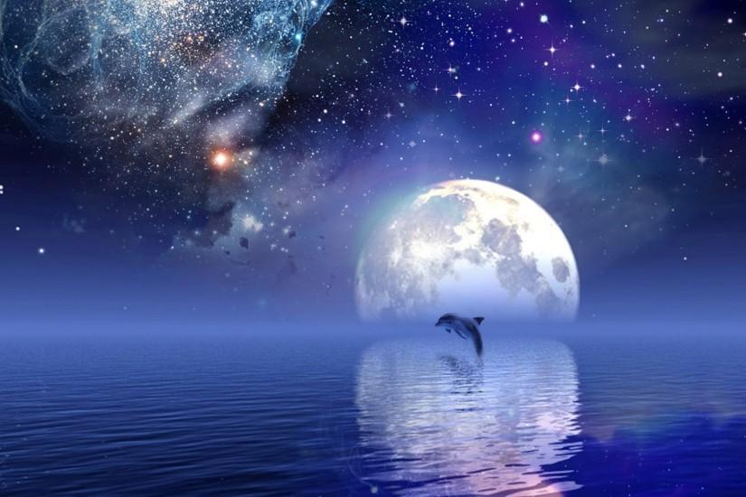 ... Wallpaper Dolphin HD ...