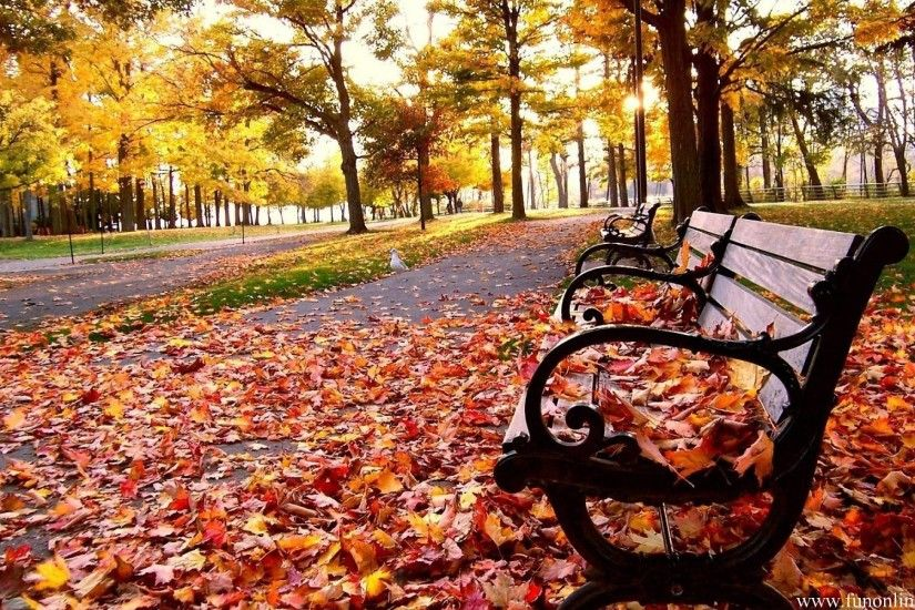 1920x1200 Fall Season Wallpapers - Full HD wallpaper search
