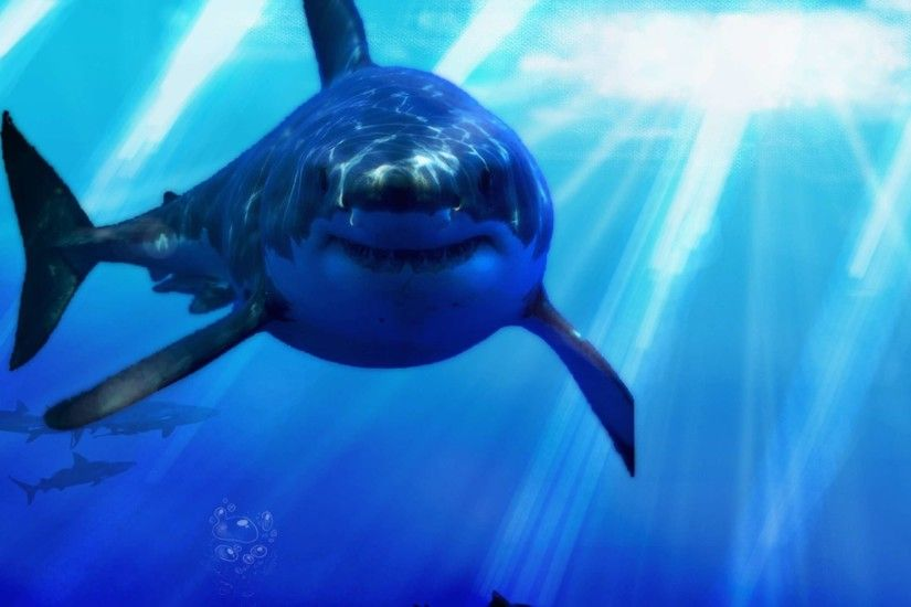 Great White Shark Wallpaper HD Widescreen | HD Wallpapers Source