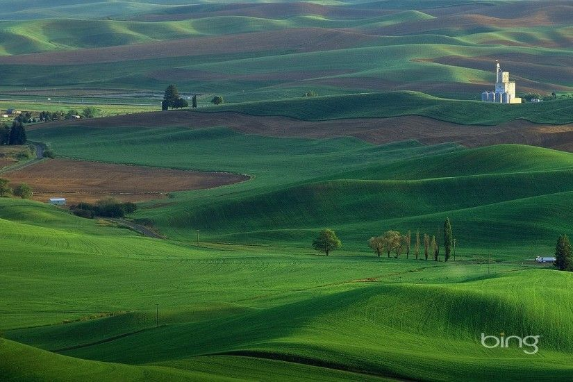 Bing Tag - Best Bing Fields Grasslands Gallery for HD 16:9 High Definition  1080p