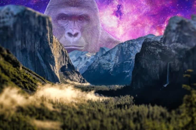 free harambe wallpaper 1920x1200 for windows 7