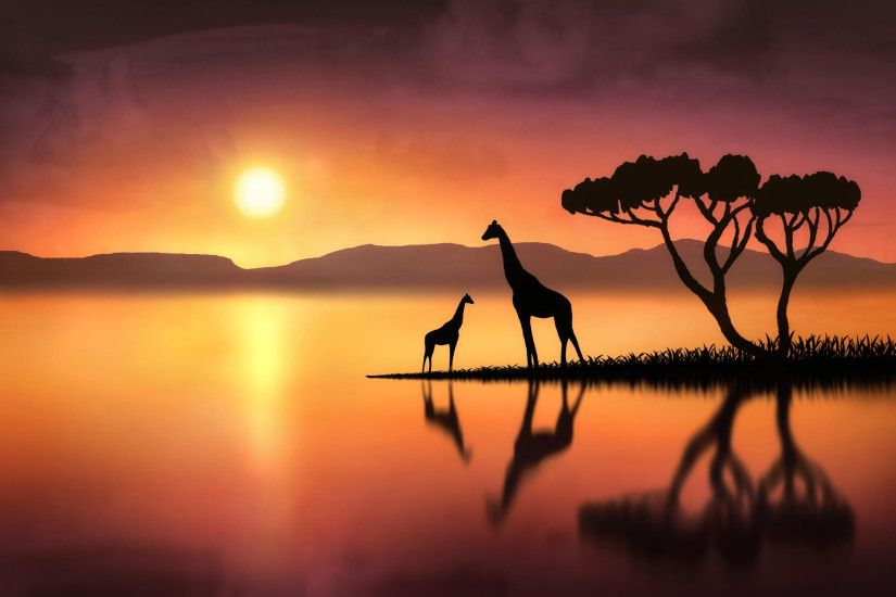 Giraffe Sunset Wallpapers For Android