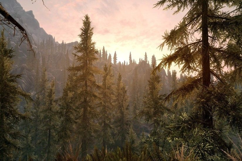 Landscapes The Elder Scrolls V: Skyrim wallpaper | 1920x1080 | 324174 |  WallpaperUP