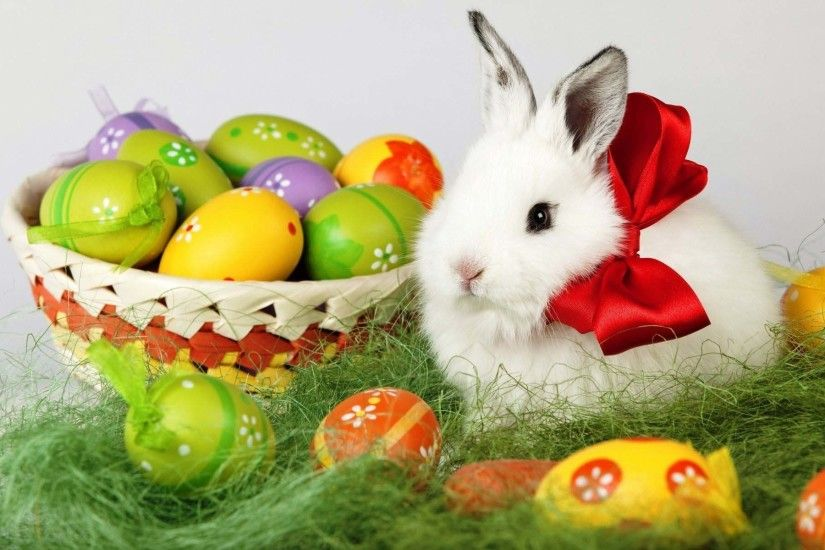 Easter Bunny Wallpapers HD.