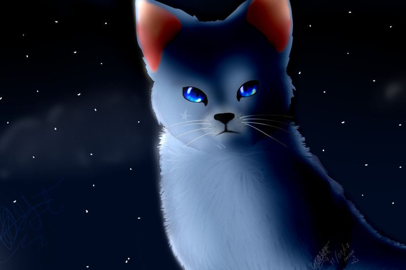 bluestar wallpaper, warrior cats. wallpaper estrella azul.