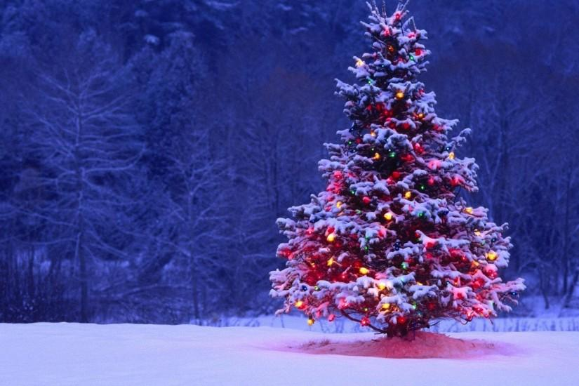 christmas tree wallpaper 1920x1080 photo