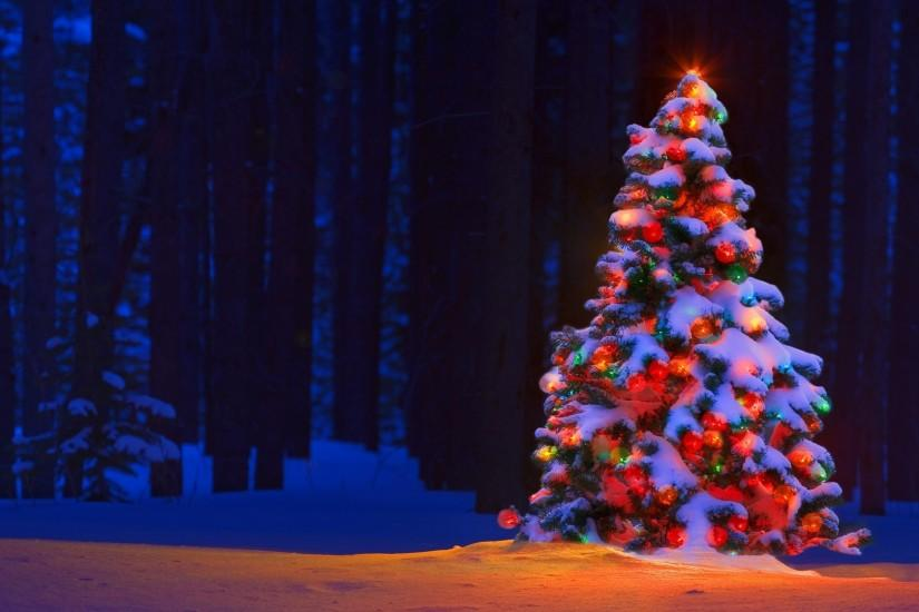 christmas tree wallpaper 1920x1080 for desktop