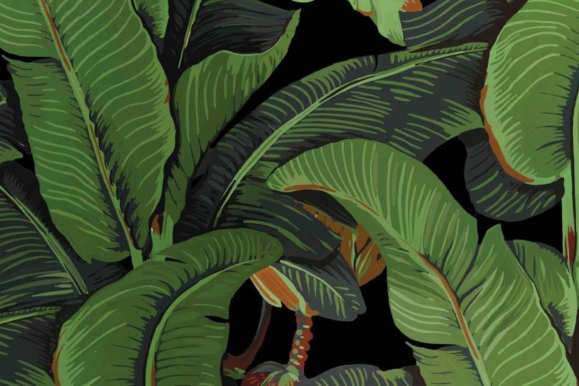... Black Variant, Black Banana Leaves Wallpaper, Banana leaf wallpaper -  WallpapersforBeginners ...