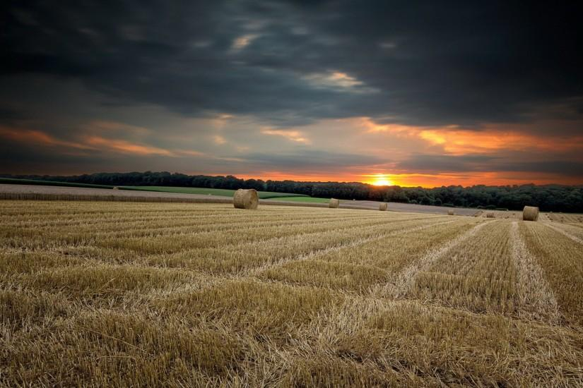 Nature landscapes fields crops farm hay bales wheat rustic trees forest sky  clouds sunset sunrise color wallpaper | 1920x1200 | 27118 | WallpaperUP