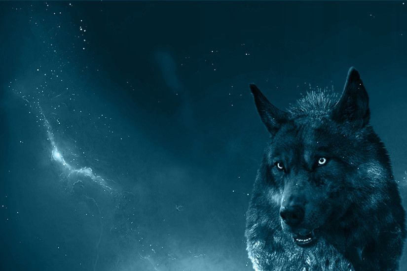 Collection of Blue Wolf Wallpaper on HDWallpapers