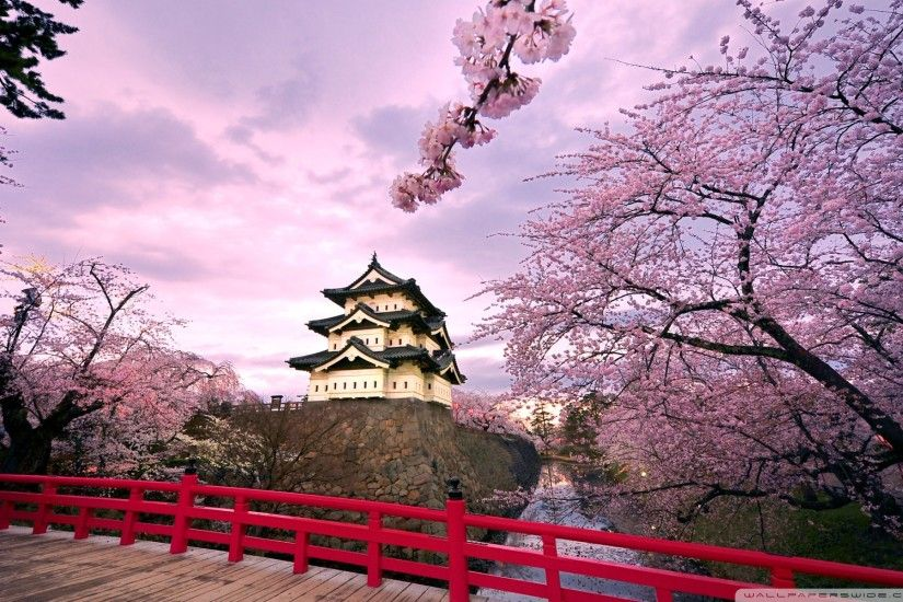 Japan wallpaper - 1113... pic source