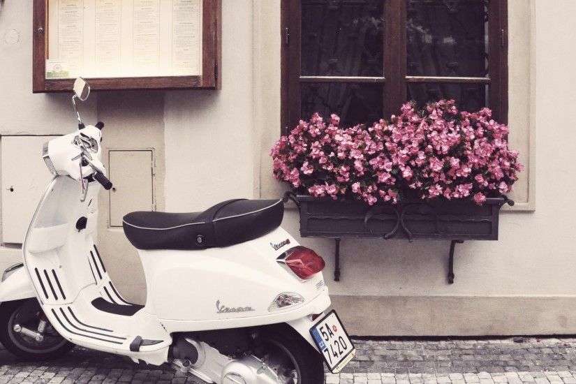 Scooter, Window, Flowers, Motorcycle