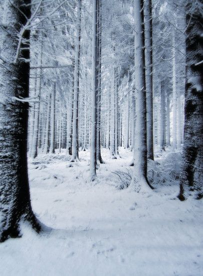 Snow Background by PVS by pixievamp-stock ...