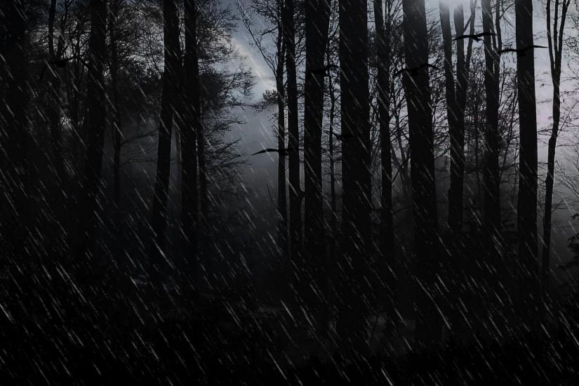 Wallpapers Dark Evil Rain Showers Forest Trees 1920x1080PX .