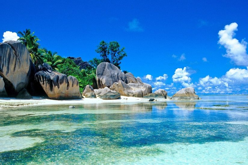 1920x1080 Wallpaper sea, palm trees, coast, stones, boulders, tropics
