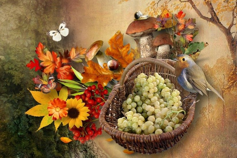 Basket Bird Butterflies Mushrooms Floral Signs Fall Flowers Grapes Leaves  Autumn Cute Wallpapers
