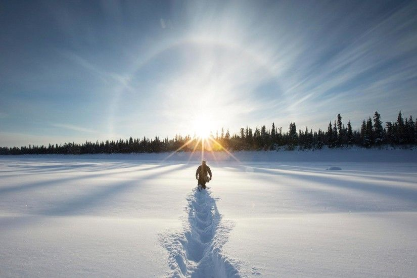 landscape, Snow, Lens Flare, Forest, Winter Wallpapers HD / Desktop and  Mobile Backgrounds