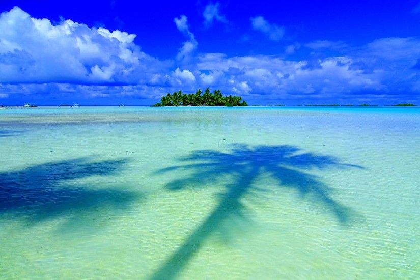 tropical wallpapers 25207
