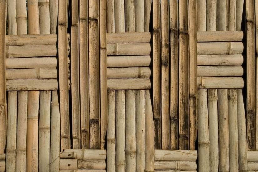 gorgerous bamboo background 1920x1080 hd for mobile