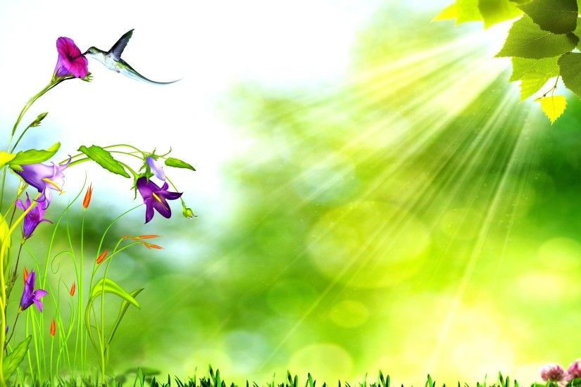 spring background with bird, purple flowers, green leaves and Sunlight hd  wallpaper
